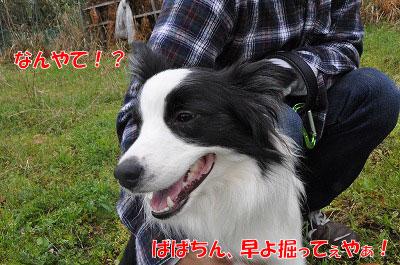 20110501-kisen05.jpg