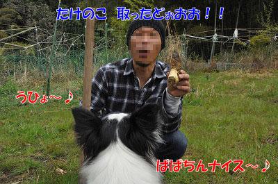 20110501-kisen07.jpg