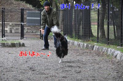 20110501-sa07.jpg