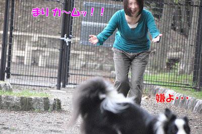 20110501-sa08.jpg