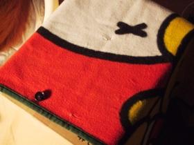 シール集めたらもらえた毛布