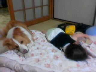 赤ちゃん爆睡中で全く気づかず
