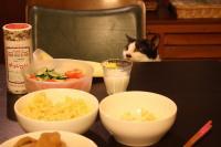 飯かにゃ?