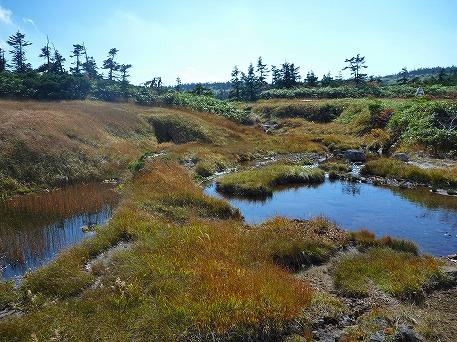 八幡平の湿原(2009.9.26)