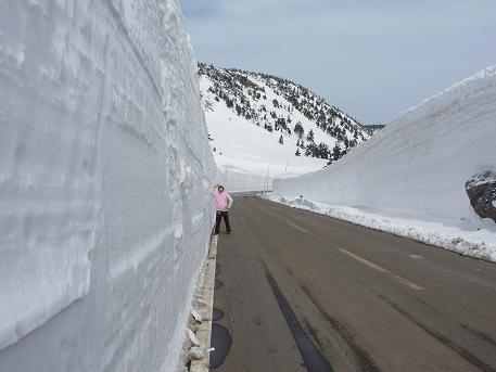雪の回廊と見上げる誰かさん(2010.4.16)