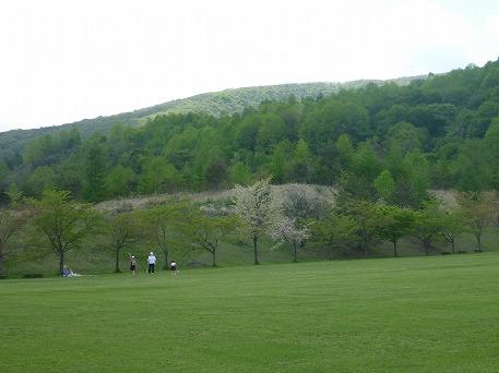 さくら公園で遊ぶ人(2010.5.22)