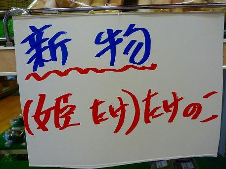 姫竹の表示(2010.5.26)