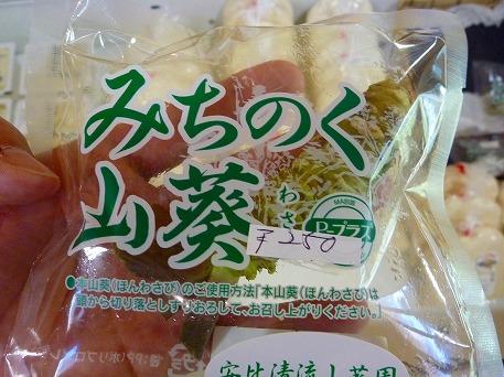 わさび?(2010.5.31)