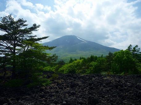 焼走り熔岩流⑥(2010.6.7)