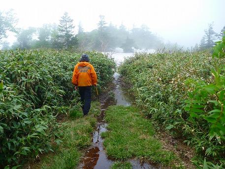 茶臼岳ぶらり16(2010.6.17)