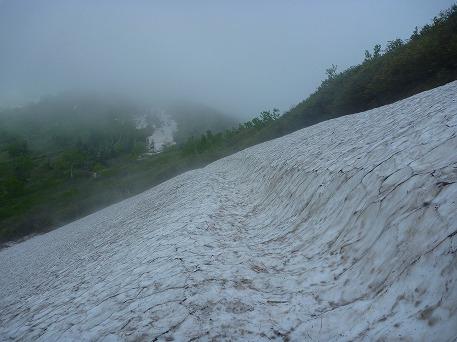 茶臼岳ぶらり23(2010.6.17)