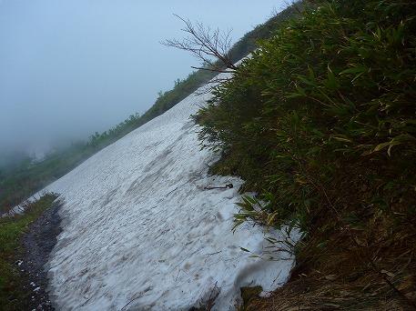 茶臼岳ぶらり24(2010.6.17)