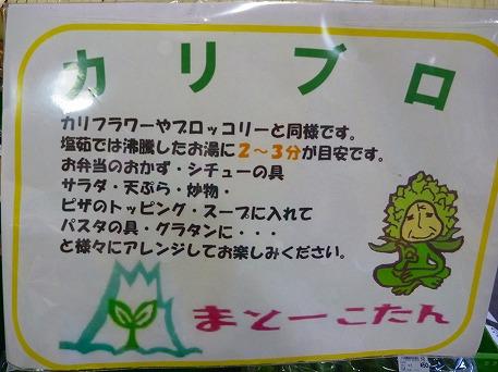 あすぴーて09(2010.6.23)