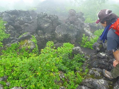 岩手山登山38(2010.7.1)