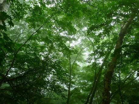岩手山登山45(2010.7.1)