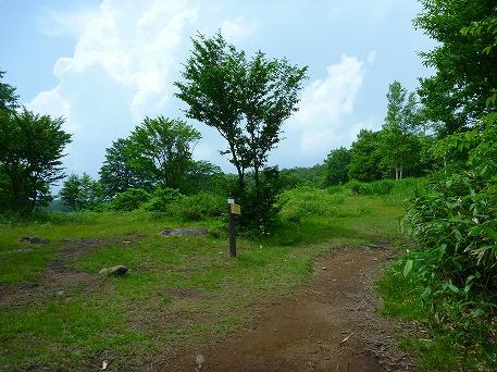 安比高原中の牧場03(2010.7.8)