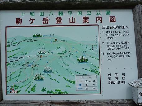 秋田駒ケ岳06(2010.7.18)