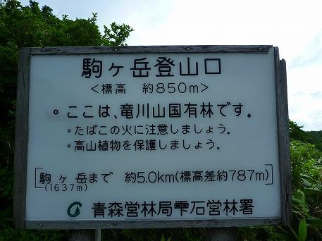 秋田駒ケ岳08(2010.7.18)