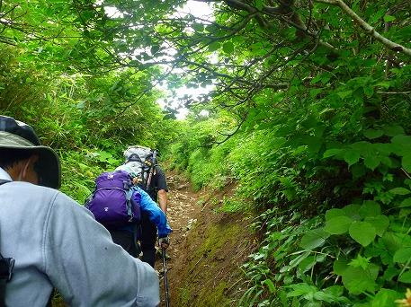 秋田駒ケ岳17(2010.7.18)