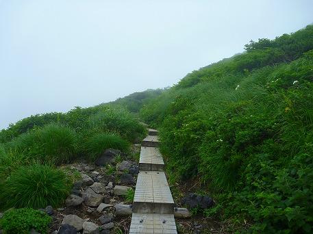秋田駒ケ岳64(2010.7.18)