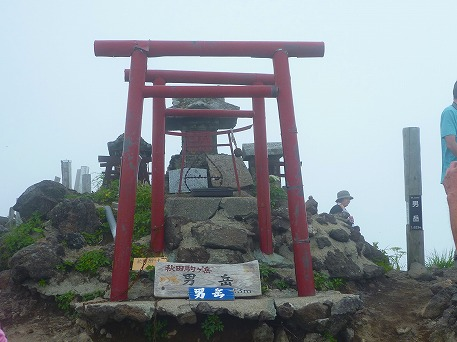 秋田駒ケ岳81(2010.7.18)