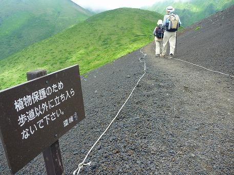 秋田駒ケ岳118(2010.7.18)