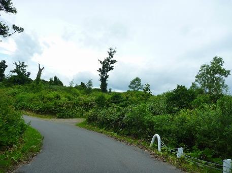 智恵の滝探検隊10(2010.7.19)