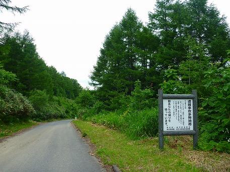 智恵の滝探検隊13(2010.7.19)