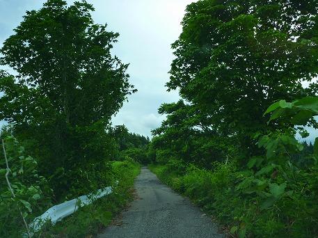 智恵の滝探検隊27(2010.7.19)