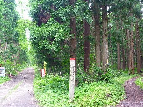 智恵の滝探検隊31(2010.7.19)
