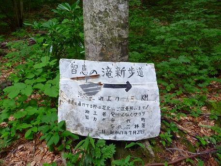 智恵の滝探検隊35(2010.7.19)