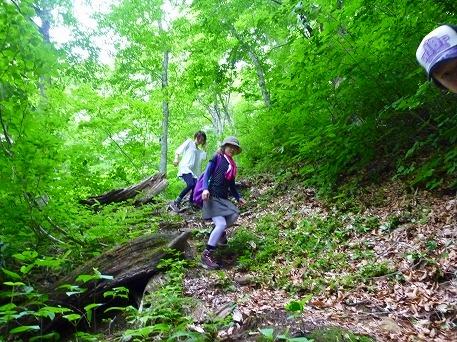 智恵の滝探検隊48(2010.7.19)
