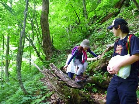 智恵の滝探検隊54(2010.7.19)