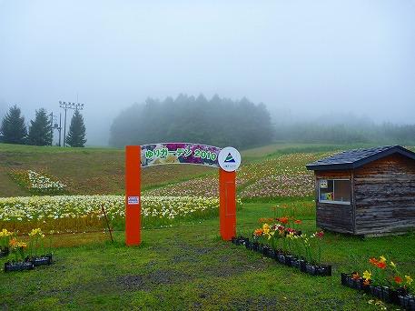 ゆりガーデン02(2010.7.31)