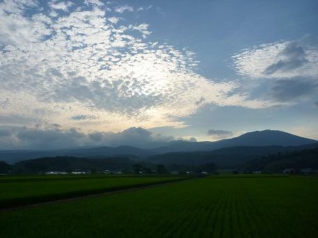 野駄のうろこ雲01(2010.8.4)