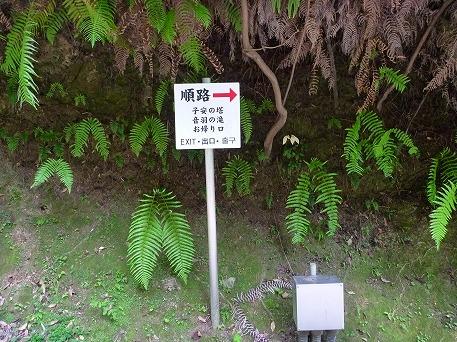 そうだ清水寺へ行こう56(2010.8.7)