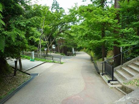 そうだ清水寺へ行こう57(2010.8.7)