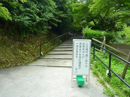 そうだ清水寺へ行こう58(2010.8.7)