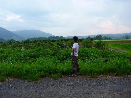ブルーベリー収穫体験と誰かさん02(2010.8.11)