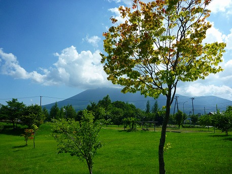 さくら公園03(2010.8.19)