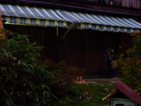 秋田の温泉へ行こう温泉散策編16(2010.9.23)
