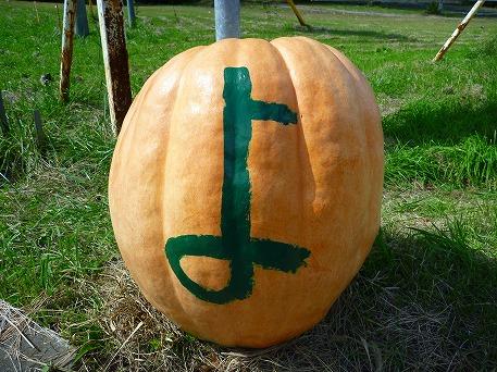 かぼちゃ02(2010.9.27)