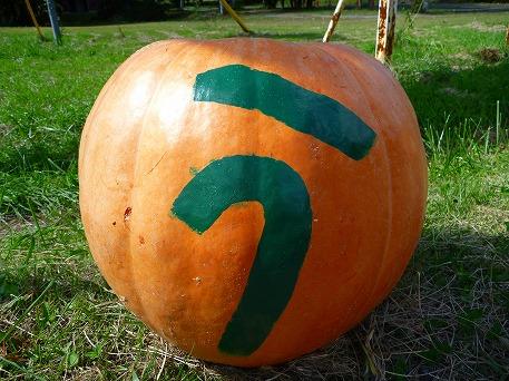 かぼちゃ03(2010.9.27)