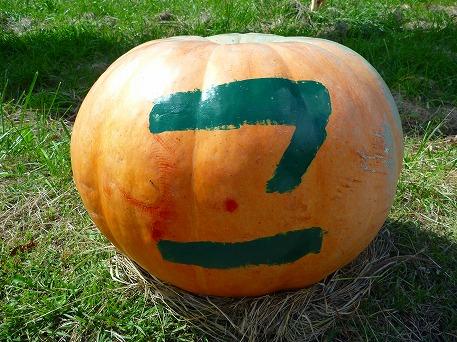 かぼちゃ04(2010.9.27)