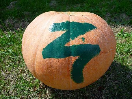 かぼちゃ05(2010.9.27)