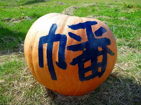 かぼちゃ07(2010.9.27)