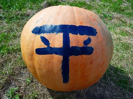 かぼちゃ08(2010.9.27)