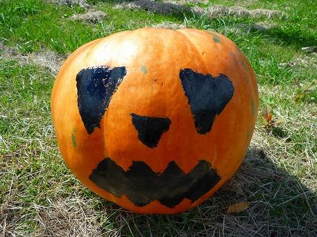 かぼちゃ10(2010.9.27)