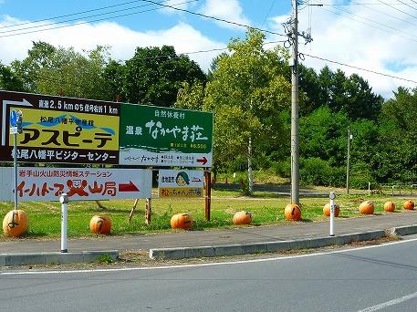 かぼちゃ01(2010.9.27)