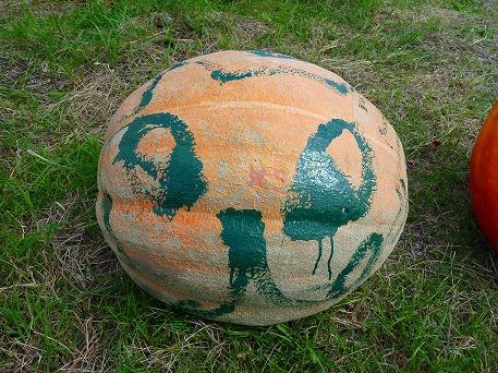 かぼちゃ16(2010.9.27)